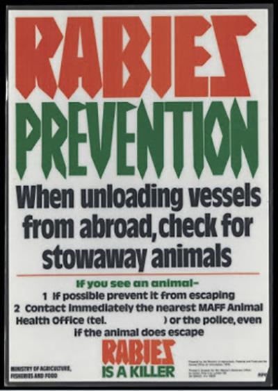 rabies2