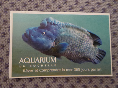 la rochelle aquarium ticket