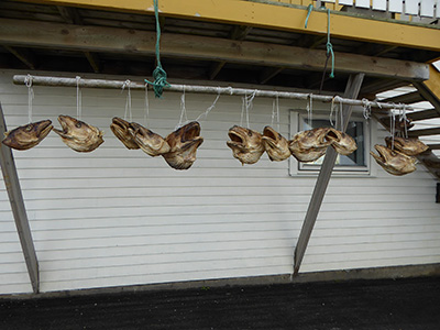 cod long line
