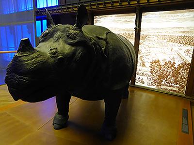 400 rhino versailles