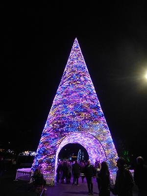 400 lights 2