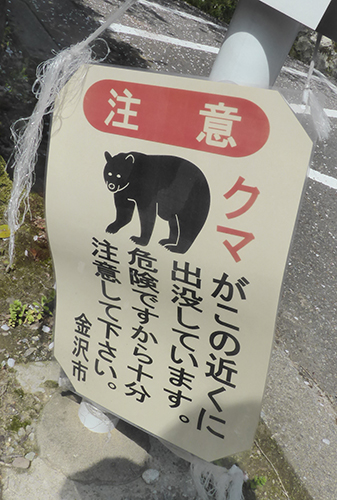 500 bear warning sign