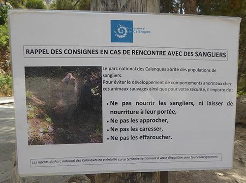 500 boar warning sign