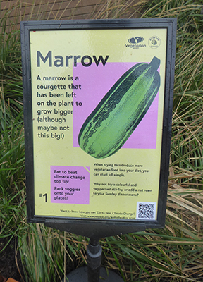 400 marrow sign